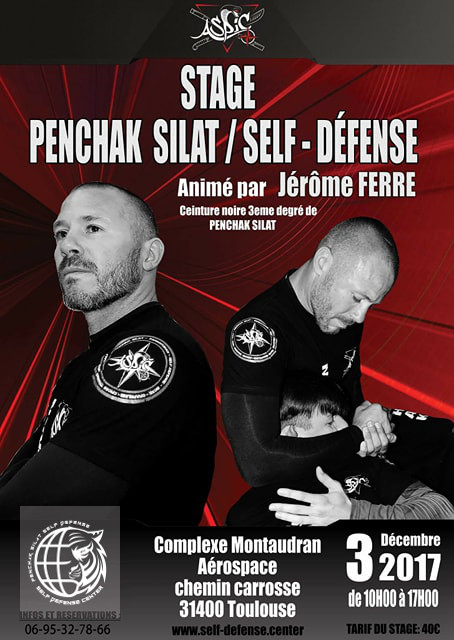 Stage avec Jérôme Ferré, expert en Silat et self-défense