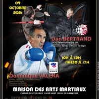 Stage International Pieds-Poings & Self-Defense